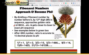 Screenshot of association between Fibonacci numbers and phi